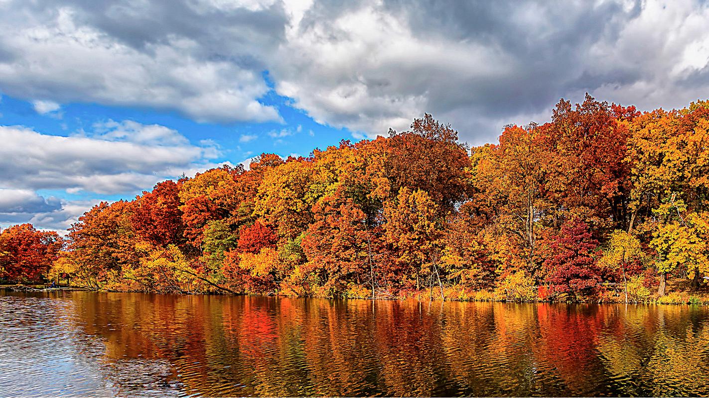 Indiana Autumn by Edward Byrne