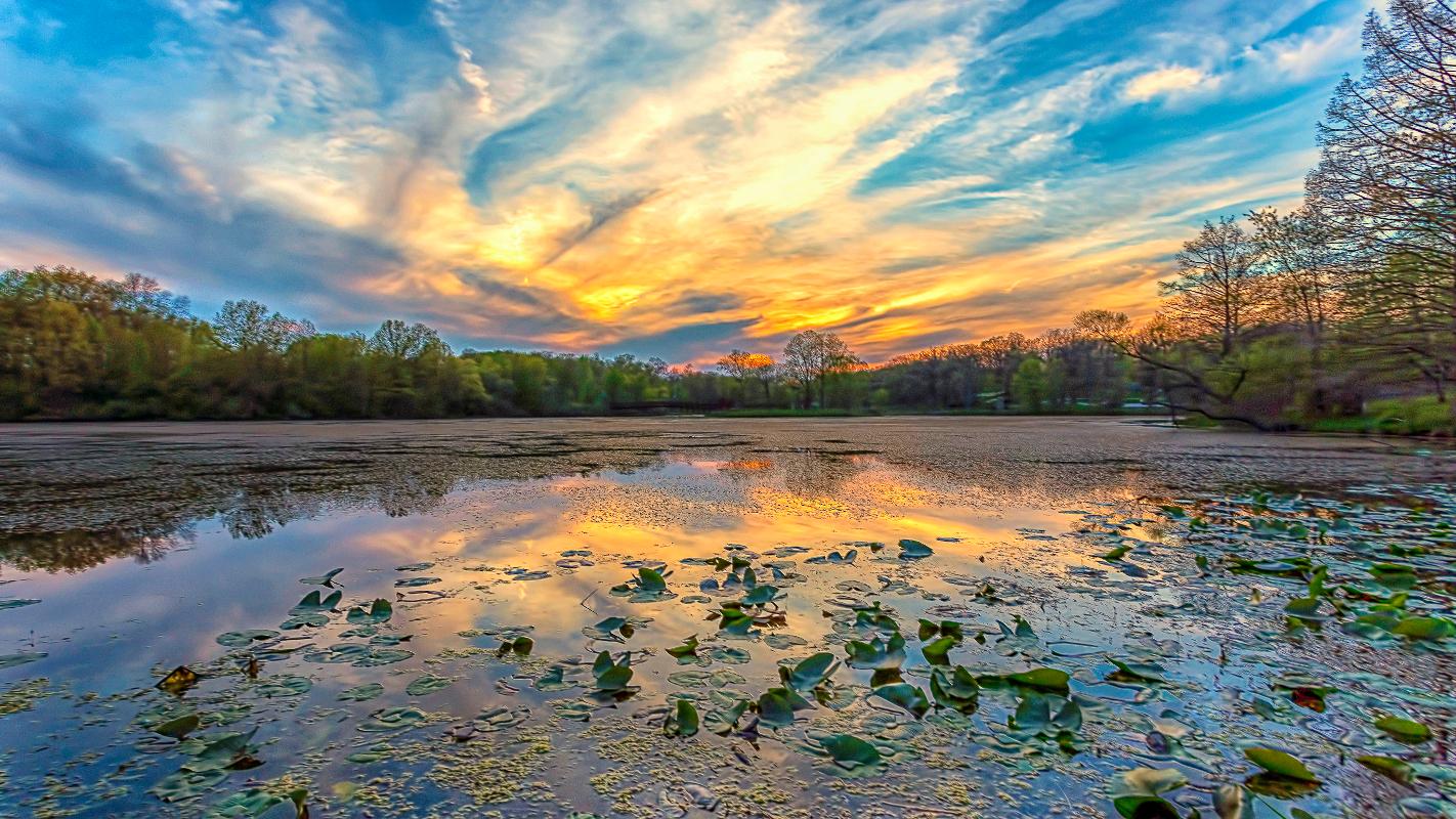 Spring Sky by Edward Byrne