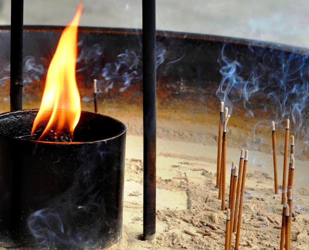 Meiji Shrine Lamps by Jayne Marek