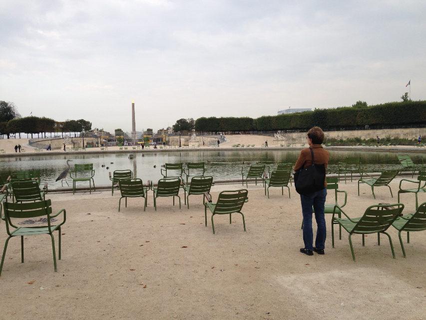 Jean-Yves Solinga – Great Blue Heron in Paris