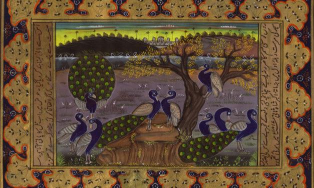 Soodabeh Saeidnia – Three Poems