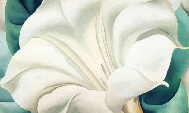 Grace Marie Grafton – Five Poems