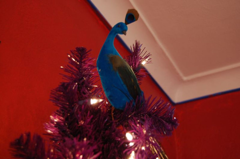 Lynn B. Connor – The Peacock on Top of the Christmas Tree